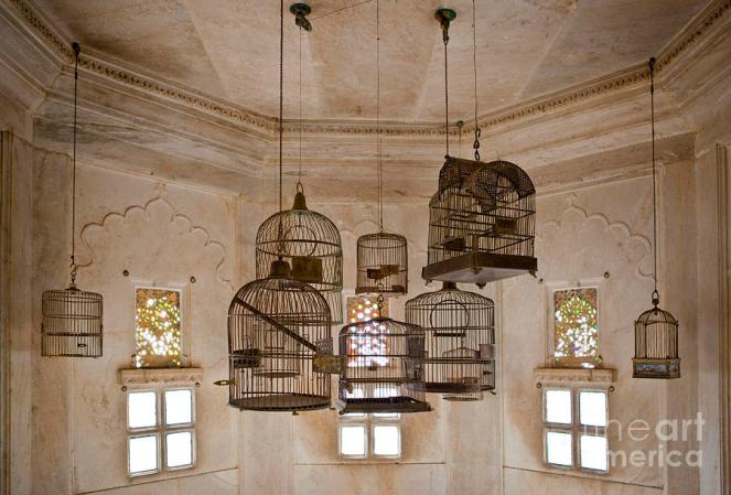 empty-bird-cages-in-the-city-palace-francis-zera